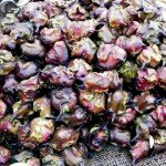 dsกระจับ (Water chestnut, Water caltrops)