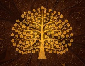 ต้นไม้ให้โชค